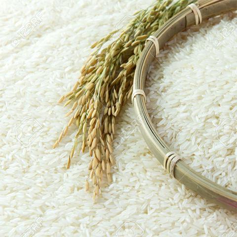 Hình ảnh Gạo